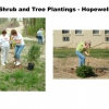 phoca_thumb_l_Shrub-and-Tree-Planting---Hopewell